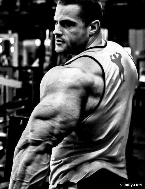 Превращается ли жир в мышцы